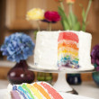 Rainbow Cake. Slice of colorful baked celebration dessert — Stock Photo