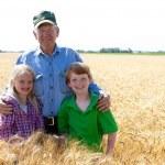Grandfather farmer stands with grandchildren in wheat field — Stock Photo