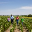 A proud hardworking midwestern grandmother and grandfather, farmers, stand with grandchildren in a field of corn — Stockfoto