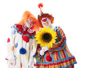 Clowns. Adult male and female clown couple holding a flower — Stock Photo