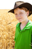 Young midwestern cowboy stands in wheat field on farm — Stok fotoğraf