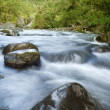 Stock Photo: Ecology scene. River flow