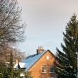 Big house on winter from Netherlands — Stock Photo #19288571