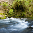 Ecology scene. river flow — Stock Photo