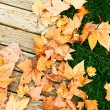 Autumn leaves and wood - Stock Photo