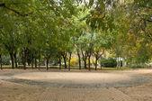 Ağaçlar park, ekoloji sahne — Stok fotoğraf
