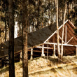 Stock Photo: Old Cabin into woods