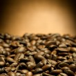 Coffee texture — Stock Photo #19471261