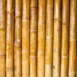 Stock Photo: Bamboo Texture