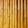 Bamboo Texture — Stock Photo #19472927