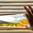 Hand opening window blinds with beautiful landscape view - Stock Photo