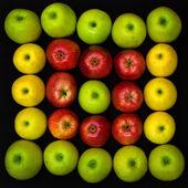 Frukt på svart — Stockfoto