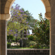 Church of Beatitudes — Foto Stock #18989599