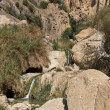 En Gedi, desert oasis in the dead sea region — Stock Photo