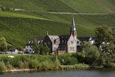 Beautiful village and vineyards — Stock Photo