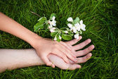Hands of lovers on grass — Stock Photo