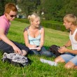 Three students talking in the park - Stock Photo