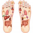 Reflexology — Stock Photo