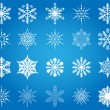 Snowflakes collection. Vector. — Stock Vector
