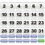 Complete calendar. Icons Set. — Stock Vector