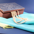 Silver box and pearl necklace — Stock Photo #48698671