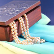 Silver box and pearl necklace closeup — Stock Photo #48698975