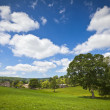 Idyllic rural landscape, Cotswolds UK — Stock Photo