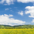 Idyllic rural landscape, Cotswolds UK — Stock Photo #25460005