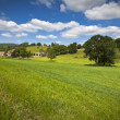 Idyllic rural landscape, Cotswolds UK — Stock Photo #25460101