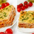 Italian lasagna collage with meat and tomatoes. — Stock Photo #39766181