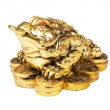 Chinese Feng Shui Frog with coins, symbol of money and wealth - Stock Photo