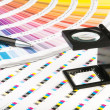 Color management in print production — Stock Photo
