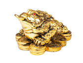 Chinese Feng Shui Frog with coins, symbol of money and wealth — Stock Photo