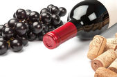 Bottle of red wine on white background — Stock Photo