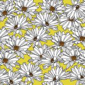 Vzor elegance s květy heřmánku — Stock vektor