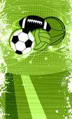 Sportowe piłki — Zdjęcie stockowe