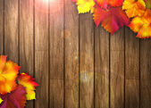 Autumn background — Fotografia Stock