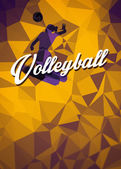 Volleyball flat polygon background — Foto de Stock