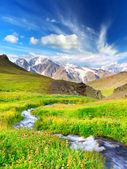Rzeka w górskiej dolinie z jasną łąkę. lato naturalny krajobraz — Zdjęcie stockowe