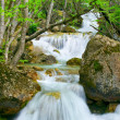 Waterfall flow — Stock Photo #20068019