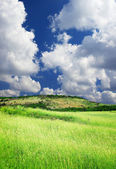 Green field and large sky with clouds. — Stock Photo