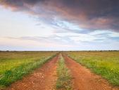 Strada sul prato verde — Foto Stock