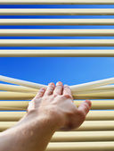 Hand and window — Stock Photo