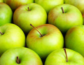 Apples close up — Stock Photo
