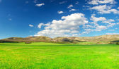 Meadow and sky with bright clouds — Stock Photo