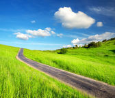 Rural road on the field. — Stock Photo
