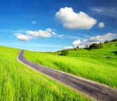 Landelijke weg op het veld. — Stockfoto