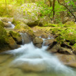 River deep in mountain forest — Stock Photo #36973409