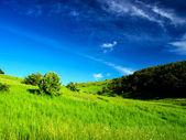 Verdi colline e il cielo con nuvole. — Foto Stock