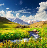 River on green meadow — Stock Photo